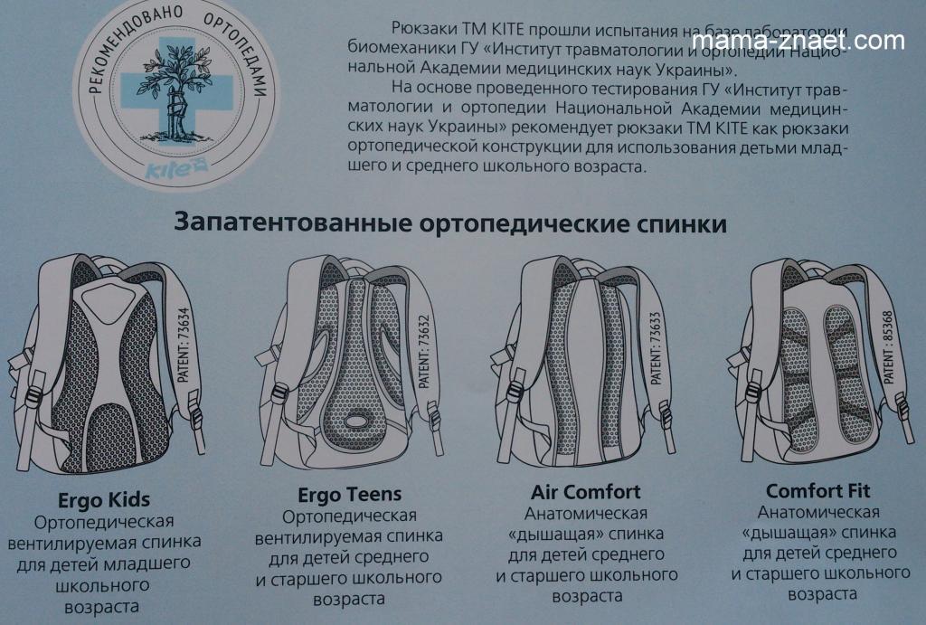 Как выглядит ортопедическая спинка рюкзака